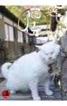 映画『猫侍』奇跡の萌えクリアファイル